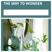 the way to wonder