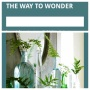the way to wonder